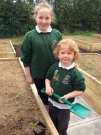 P1 Planting in the new outdoor learning classroom